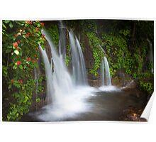 Jungle waterfall and flowers at Juayua, El Salvador Poster