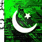 circuit board pakistan (flag) by sebmcnulty