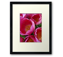 April Tulip Bouquet Framed Print