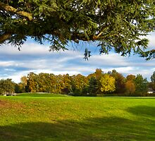 Elgin, Cooper Park Autumn by JASPERIMAGE
