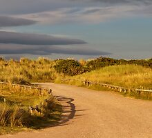 Findhorn, driveway to the beach. by JASPERIMAGE