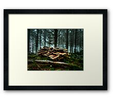 It's A low Life ~ Wild Mushrooms ~ Framed Print