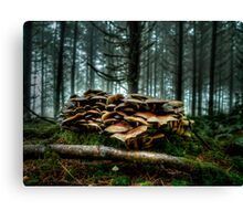 It's A low Life ~ Wild Mushrooms ~ Canvas Print