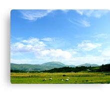 Highlands Scotland Canvas Print