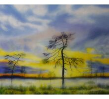 Early summer morning Photographic Print