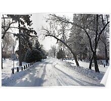 Winter Scenes Poster