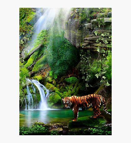 In The Jungle Photographic Print