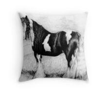 Gypsy Cob Horse Portrait Throw Pillow