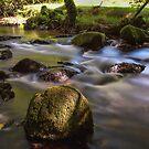 River Fowey by Stuart  Gennery