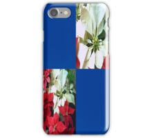 Mixed color Poinsettias 1 Blank Q1F0 iPhone Case/Skin