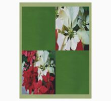 Mixed color Poinsettias 1 Blank Q5F0 Kids Clothes