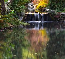 Autumn Reflections by Carrie Cole
