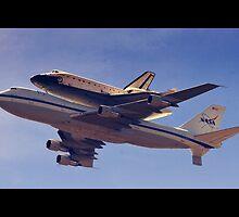 Final Flight by gisarme