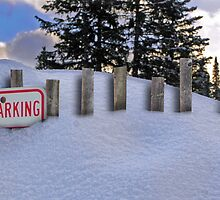 Snow Fence by GolemAura
