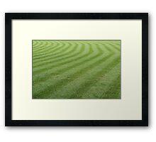 Green grass pattern. Framed Print