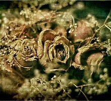 True Love Never Dies by Lois  Bryan