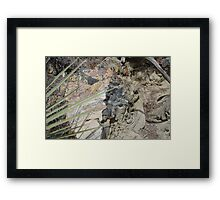 Scabbards and Stone Framed Print