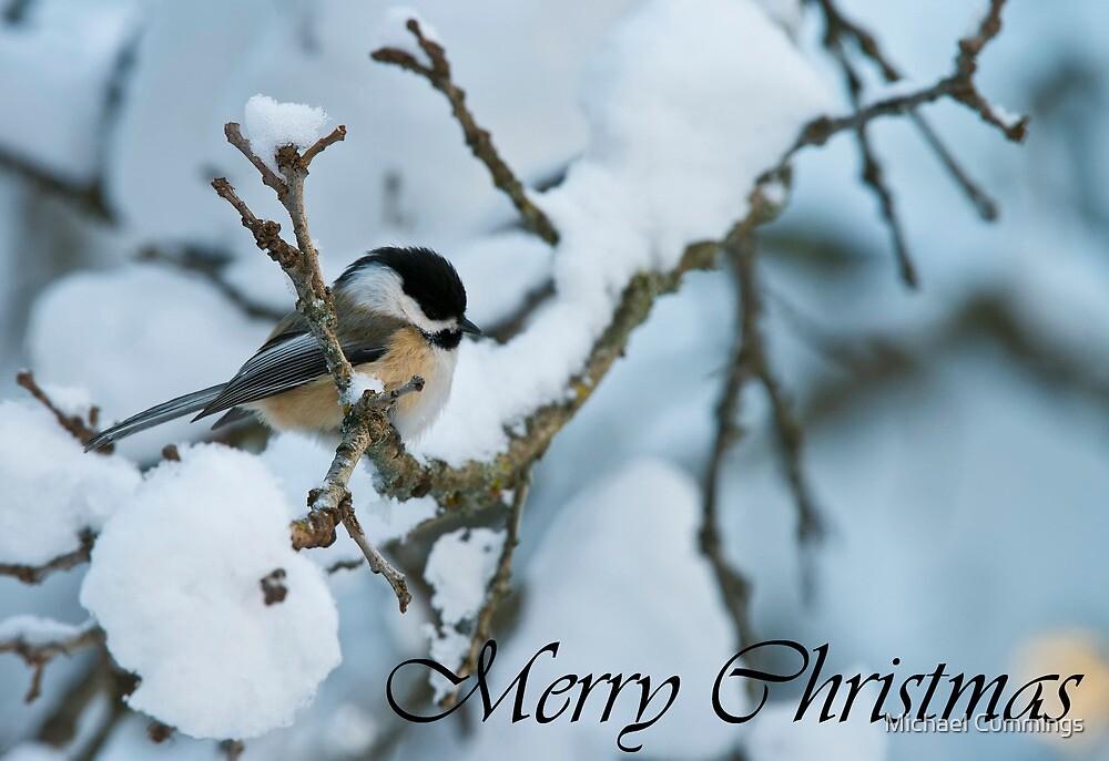 Chickadee Christmas Card 1 by Michael Cummings