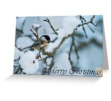 Chickadee Christmas Card 1 Greeting Card