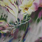 Watercolour: Freesia Waltz by Marion Chapman