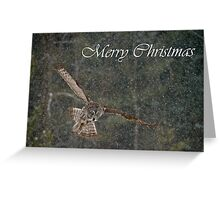 Great Gray Owl Christmas Card 8 Greeting Card