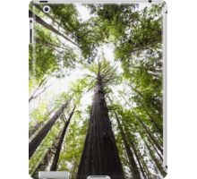 Redwood Trees  iPad Case/Skin