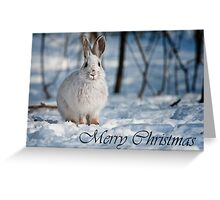 Snowshoe Hare Christmas Card 1 Greeting Card