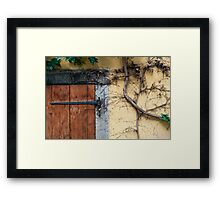 Detail of door and ivy on house facade. Framed Print