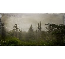 Clingman's Dome Photographic Print