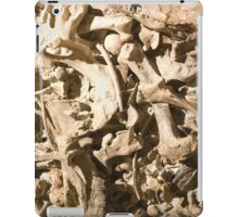 Bones and Skulls iPad Case/Skin