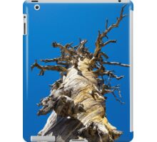 Skeletal Tree with Blue Sky iPad Case/Skin
