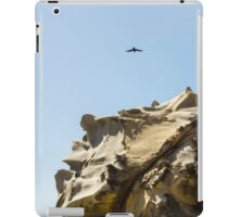 Raven Flying over Tafoni iPad Case/Skin