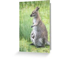 A long cold and wet November Greeting Card