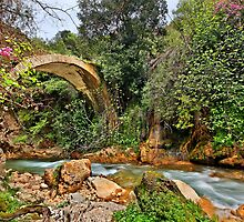 Stone arched bridge in Neda canyon by Hercules Milas