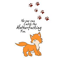 "Looking For Alaska - ""No One Can Catch the Motherfucking Fox"" John Green [Apparel & Sticker] Photographic Print"