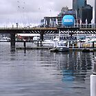 The Marina - Darling Harbour by Staffaholic