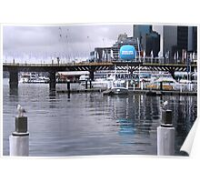 The Marina - Darling Harbour Poster
