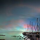 Birds Bay Retreat by Igor Zenin