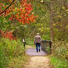 An Autumn Walk in the Park by lorilee