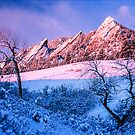 The Flatirons In Winter Blues And Pink by Greg Summers
