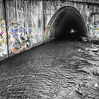 Solomon Creek Tunnel by Aaron Campbell
