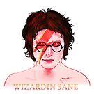 Wizardin Sane by Nana Leonti