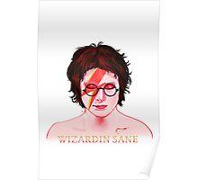 Wizardin Sane Poster
