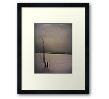 Willow idle in winter Framed Print