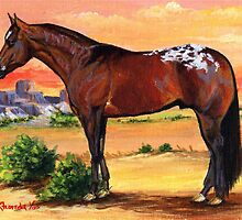 Appaloosa Horse Profile by Oldetimemercan