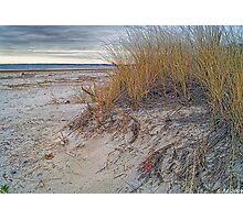 Fall Dunes Photographic Print