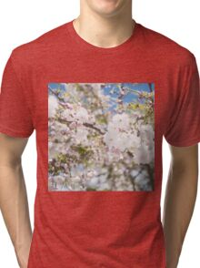 Soft Cherry Blossoms Tri-blend T-Shirt