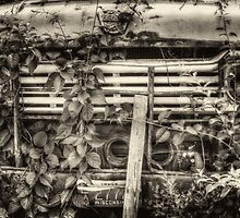 Overgrown Ford Truck by Thomas Young