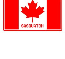 Canadian Sasquatch  by thebigfootstore