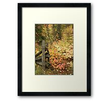 Post and Leaves Framed Print